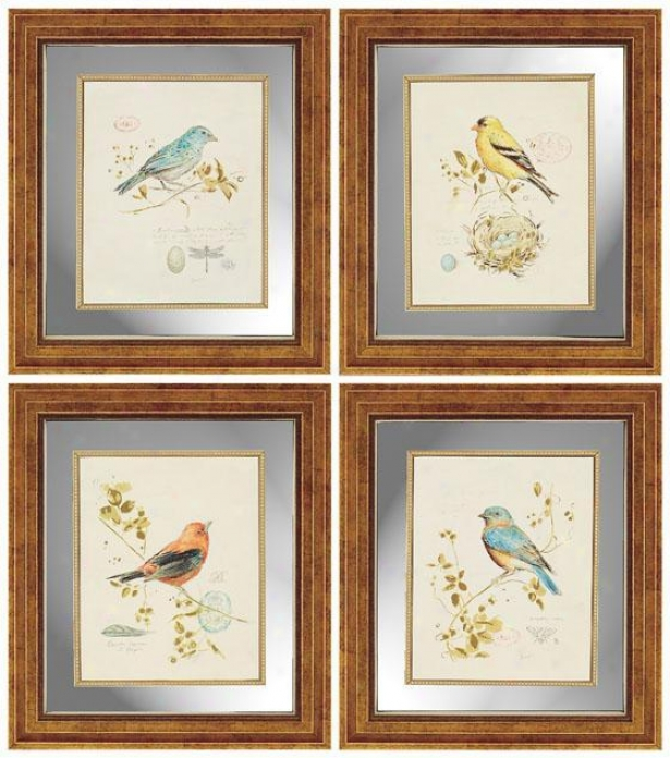 Songbirds Wall Art - Set Of 4 - Set Of 4, Ivory