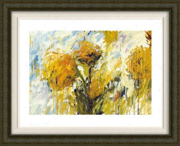 Sunflower Stare I Framed Wall Art - I, Fltd Espresso