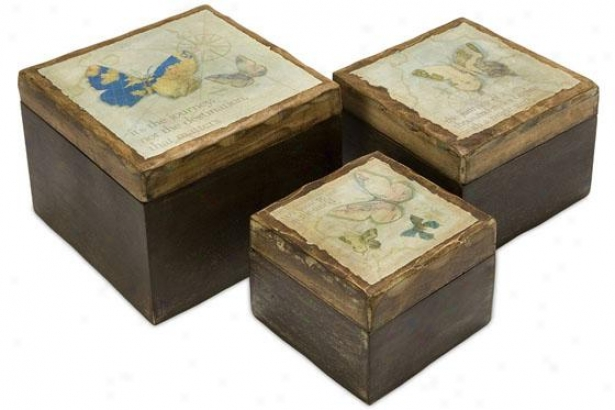 Worldly Butterfly Wood Boxes - Set Of 3 - Set Of Three, Brown