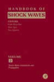 Handbook Of Shock Waves