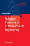 Trwnsport Phenomena In Mcro Process Engineering