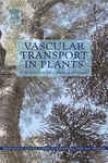 Vascular Trnasport In Plants