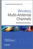 Wireless Multi-antenna Chanels