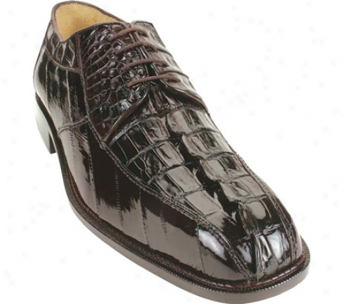 Belvedere Bruno (men's) - Brown Crocodilr/eel
