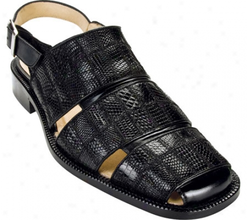 Belvedere Fumo (men's) - Black Lizard