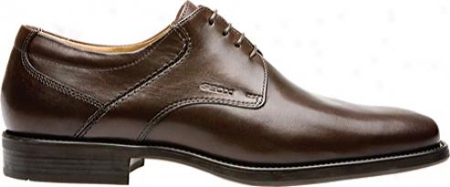 Geox Federico U1157r (jen's) - Coffee Smooth Leather