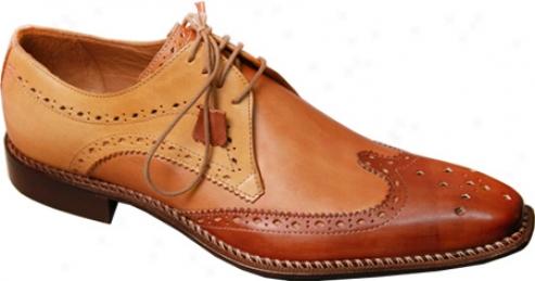 Giovanni aMrquez 8946-tri Brown Leather (men's)