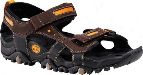 Timberland Tailray Sandal (men'a) - Dark Brown/orange