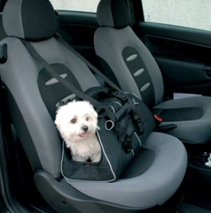 Motor Trend By Petego Jet Set Pet Carrier
