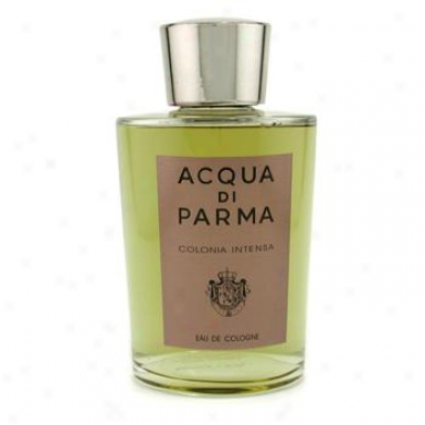 Acqua Di Parma Acqua Di Parma Colonia Intensa Eau De Cologne Splash 500ml/17oz