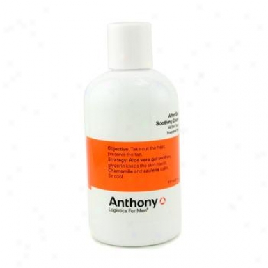 Anthony oLgistics For Men After Sun Soothing Cream 177ml/6oz