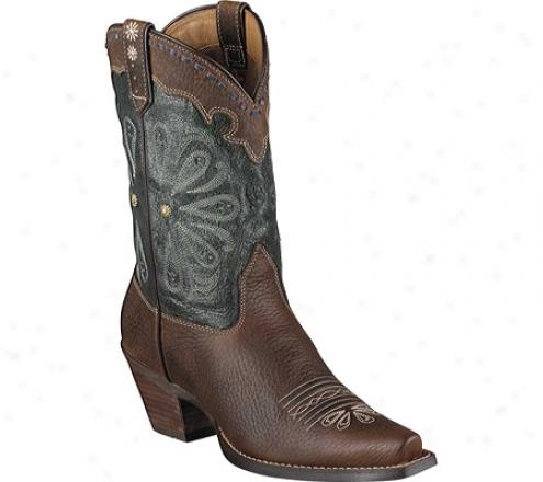 Ariat Daisy (women's) - Brown Oiled Rowdy/midnight Blue Full Grain Leather