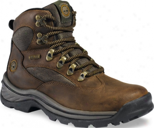 Timberland Chocorua Trail (women's) - Brown/green