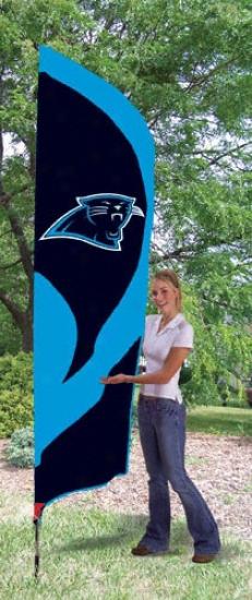 Carolina Pantners Team Pole Flag