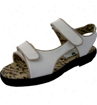Golfsyream Womens Two Strap Golf Sandals (coffee With Gold Piping)