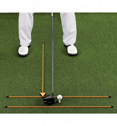 Hank Haney 3-pole Alignment Training System