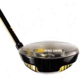 Sklz Gyro Swing