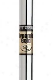 True Temper Dynamic Gold Sl Iron .370 In.